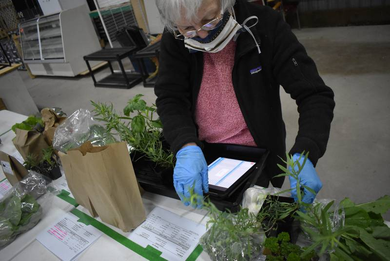 Online farmers' market infrastructure is a step toward a new normal in Nova Scotia