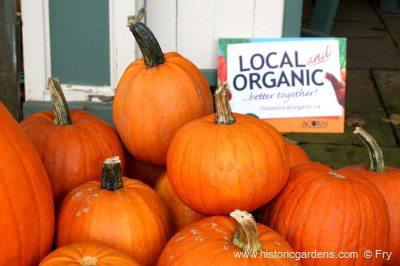 annapolis-winter-farmers-market-logo