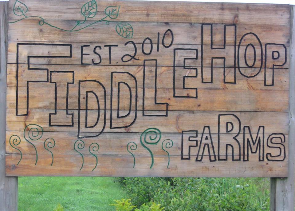 fiddlehop-farms-logo