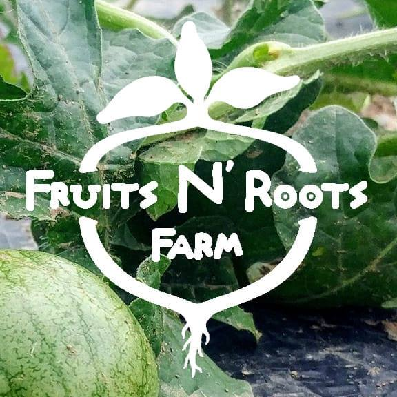 fruits-and-roots-logo