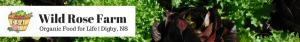 wild-rose-farm-logo