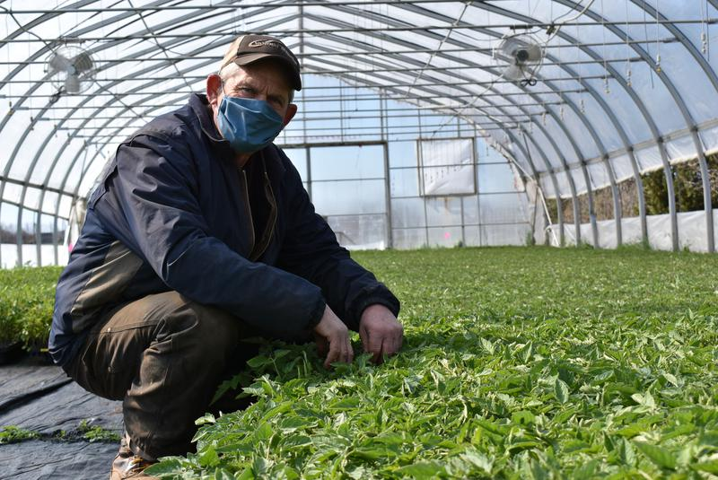 Who will harvest our food? Nova Scotians not filling farm job vacancies