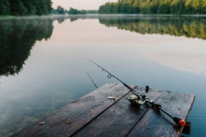 General and salmon sportfishing licences now available online
